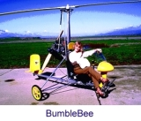 "Автожир ""BumbleBee""."